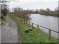 SO8427 : River Severn, upstream towards Tewkesbury by Pauline E