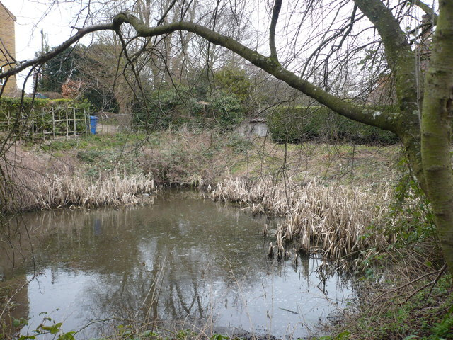 A pond at Rodmersham Green