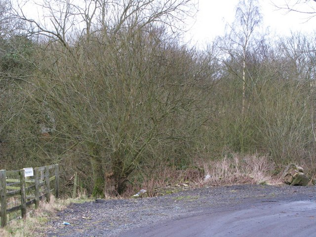 Trackbed of the former Hexham to Allendale railway line