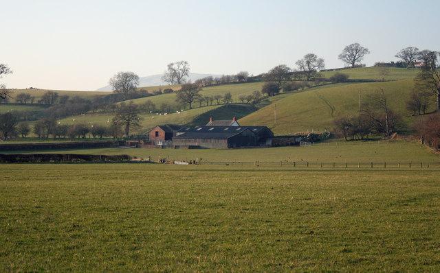 Black Barns