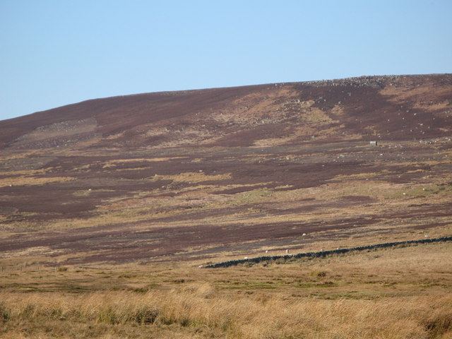 Pastures and moorland northwest of Harwood Shield