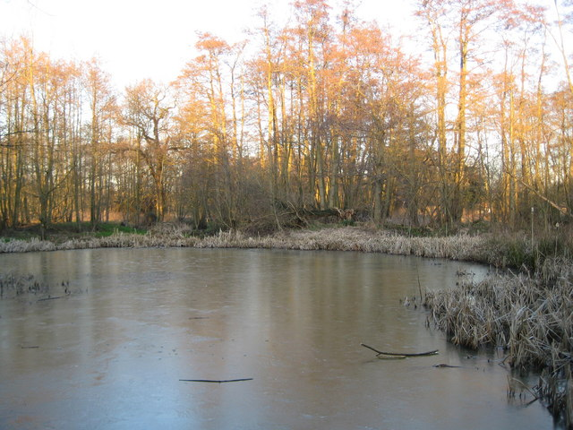 Fox Corner: Community Wildlife Area pond