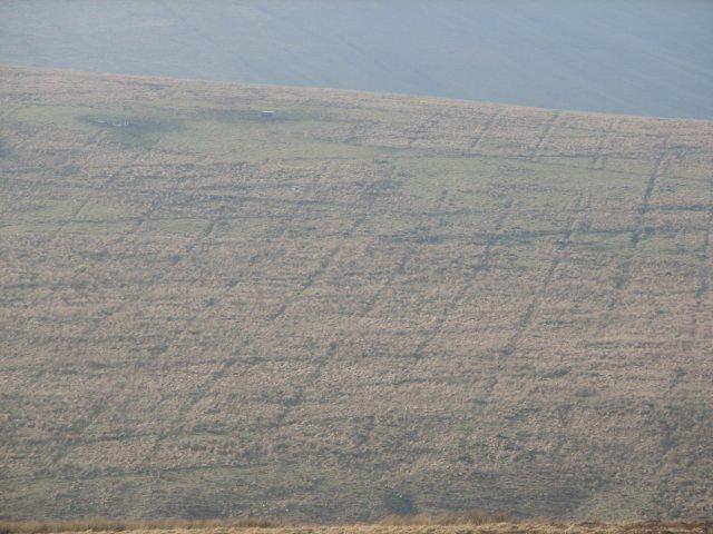 Chequerboard hillside