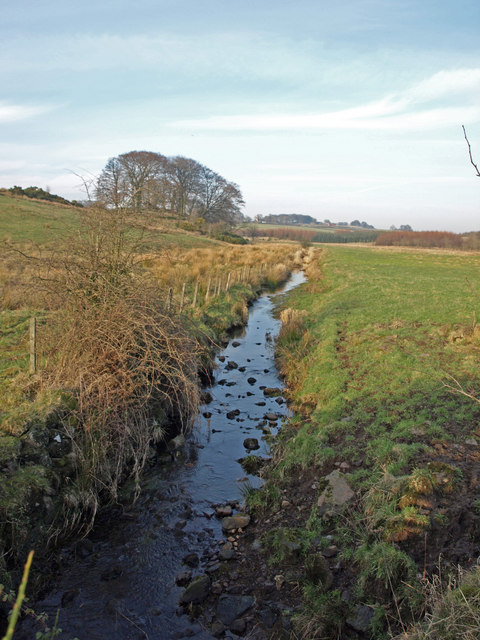 Small unnamed burn , Cuffhill