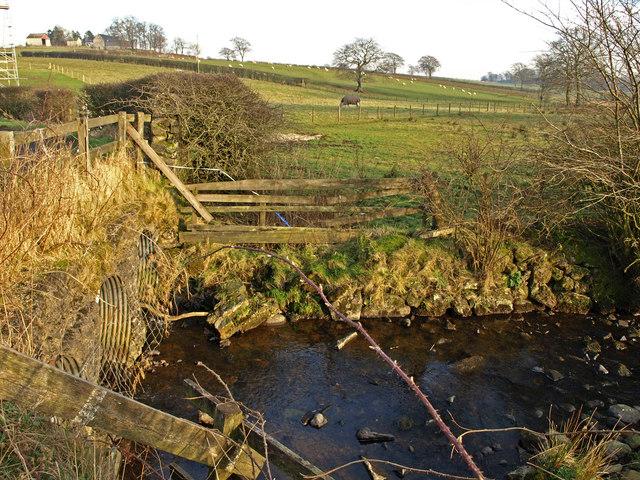 Coldstream Bridge No 1