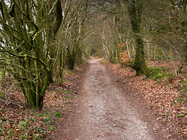 South Downs Way, Hyden Hill