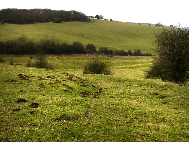 Earthworks showing former trackways on Hyden Hill