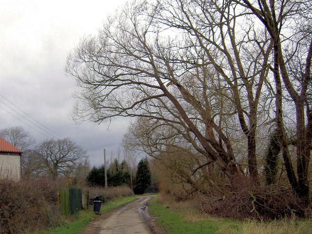Almholme Lane