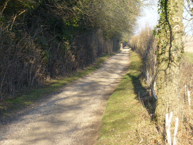 Trackway to Tidgrove Warren Farm