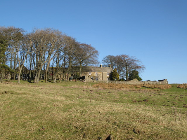 Harwood Shield Farm (4)