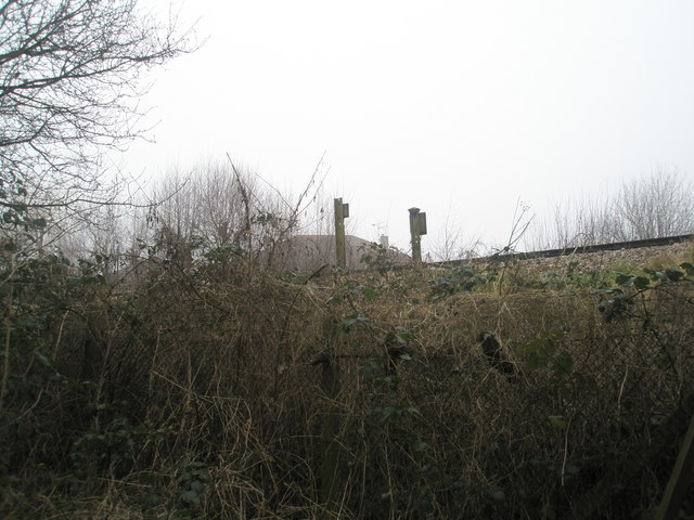 Railway line just north of Petersfield Station.