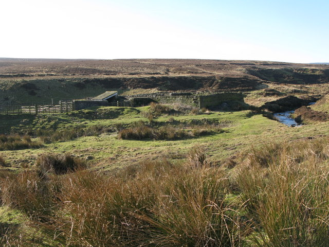 Sheepfold below Harwood Shield