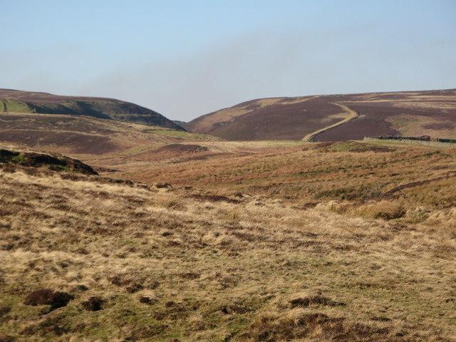 Harwoodshield Fell (2)