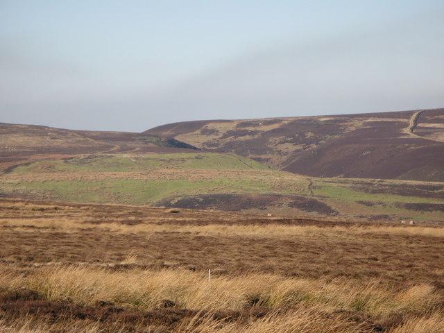 Harwoodshield Fell (8)