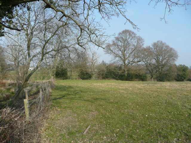 Pasture east of Popeswood Farm
