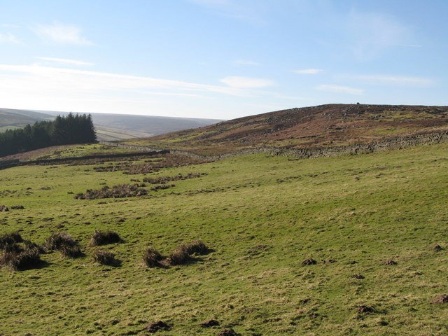 Riddlehamhope Fell