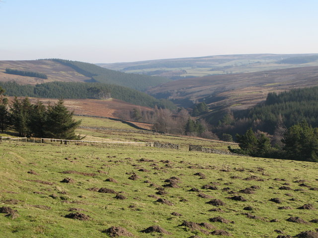 The valley of Beldon Burn (2)
