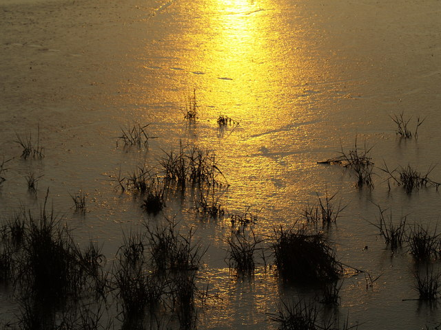 Sunset in the Mudflats