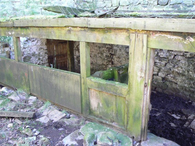 Stalls in barn