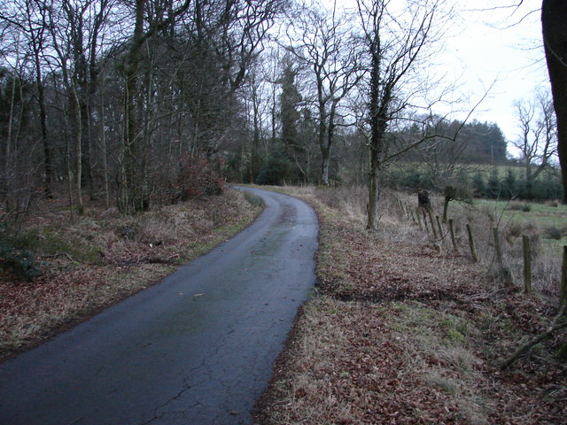 The Road to Raggiewhate