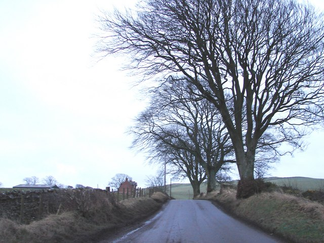 Road Near Linnhead