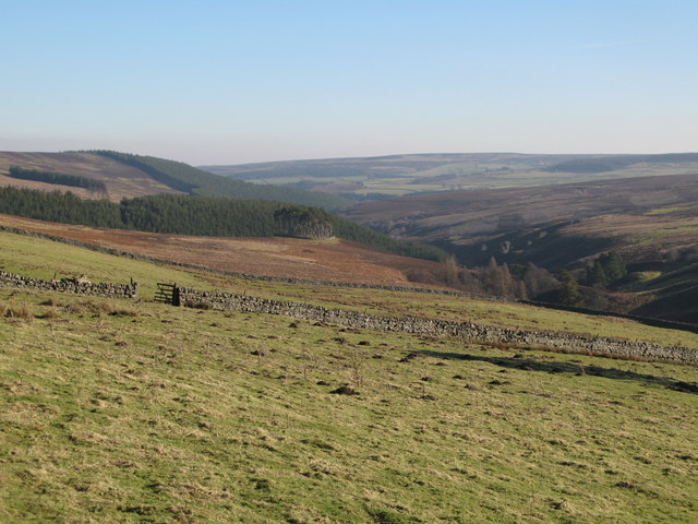 Pastures and moorland above Beldon Burn
