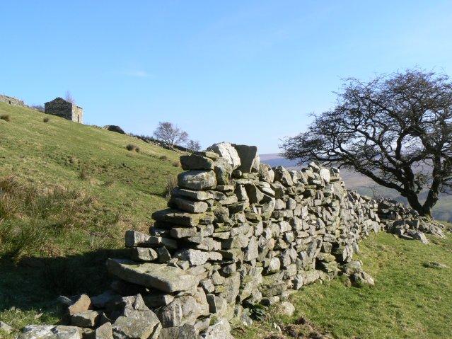 Ruined wall on Tarn Rigg Hill