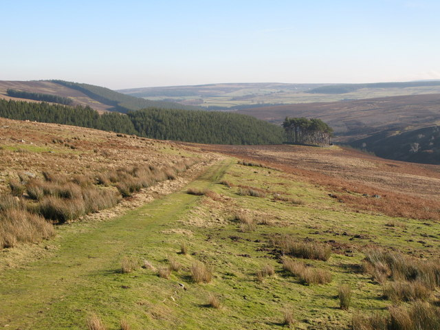 Track across the moorland east of Riddlehamhope