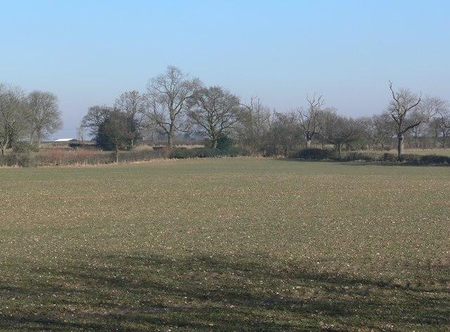 Fields north of Thurlaston
