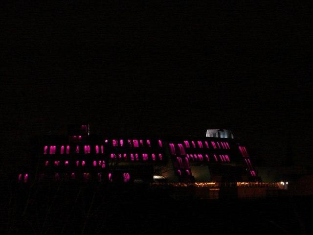 Cardinal Newman High School, Bellshill (Purple)