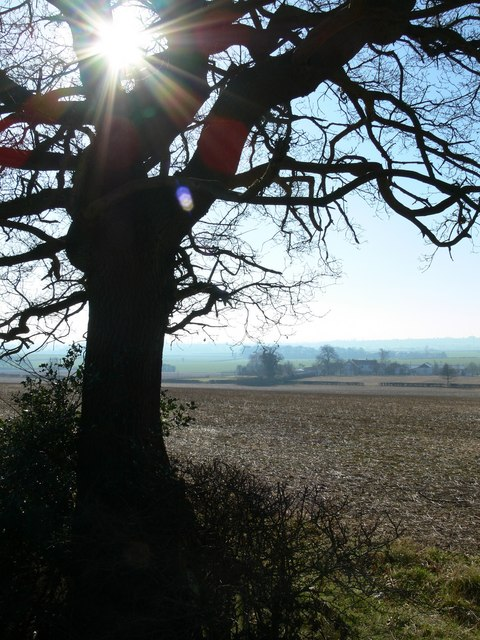 View across Leicestershire farmland