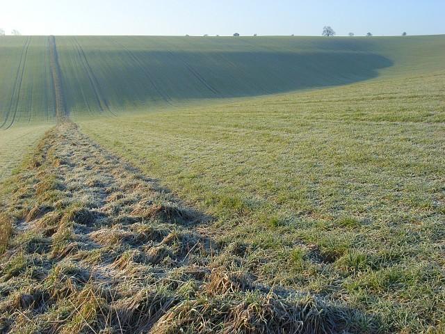 Farmland, Liddington