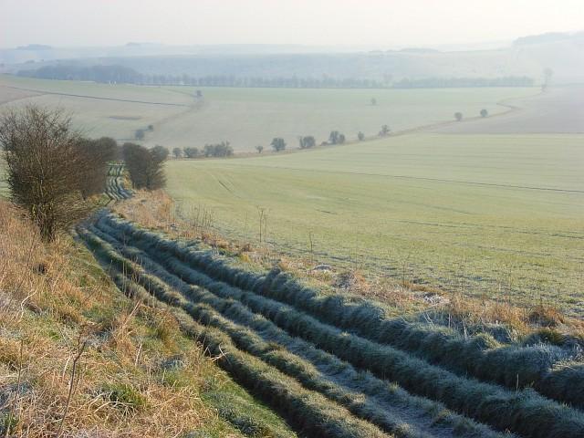 Byway and farmland, Liddington