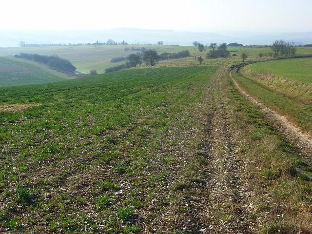 Farmland, Ogbourne St George
