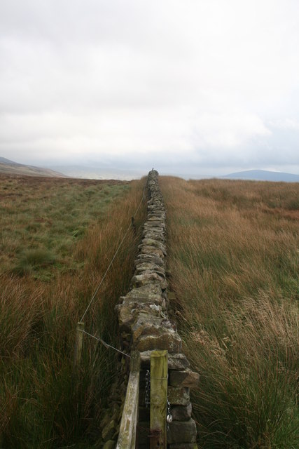 Wall on Grizedale Head walk