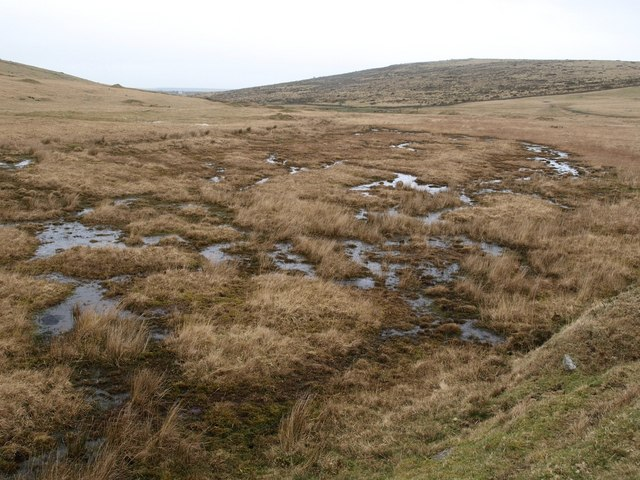 Marshy area north of Leskernick Hill