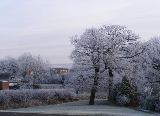 Frosty Morning in Heather Lane