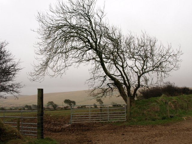 Gateway near Bowithick