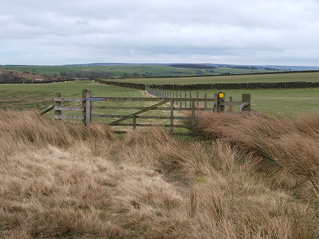 Bridleway heading towards Redmire Farm