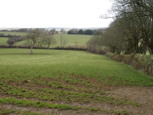Field near Treboy Farm