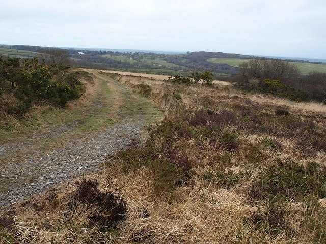 Heathland, Laneast Downs
