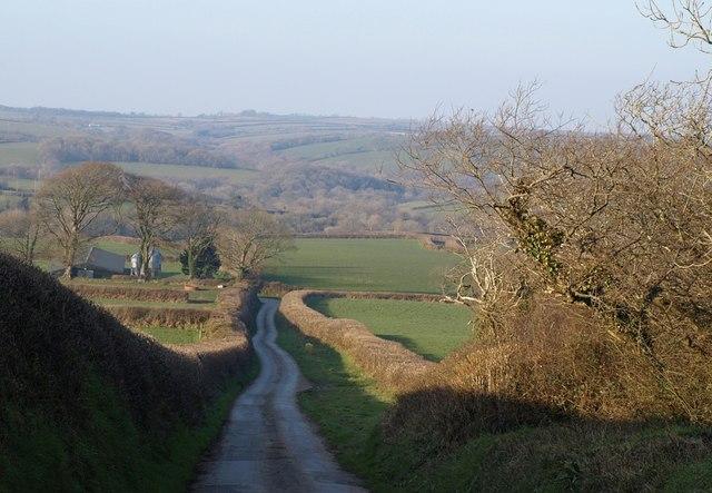 Lane at Thornehillhead
