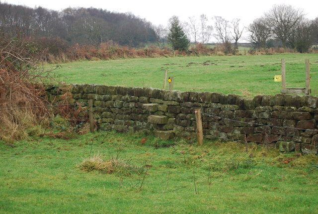 Stile over a wall