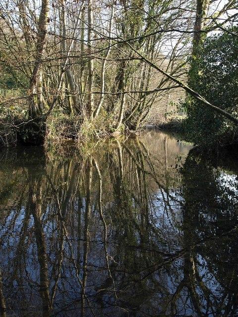 River Duntz at Buckland Mill
