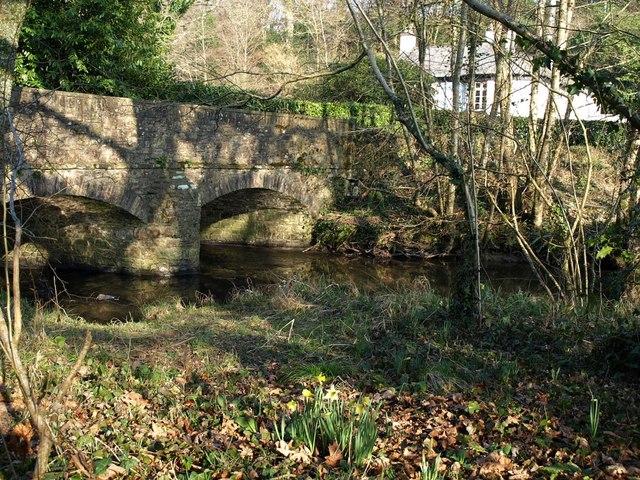 Bridge, Buckland Mill