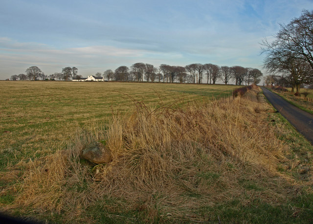 View across field to Whitehouse
