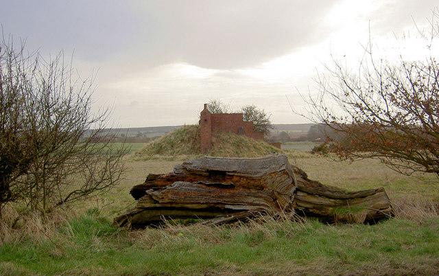 Log barrier and target