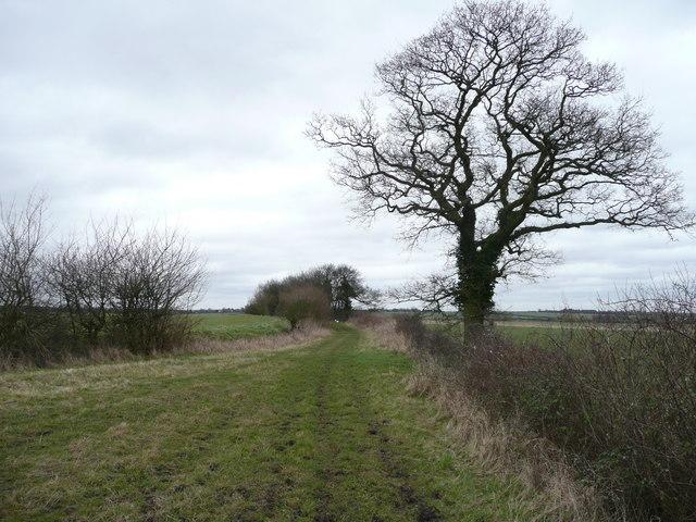 Roper's Lane