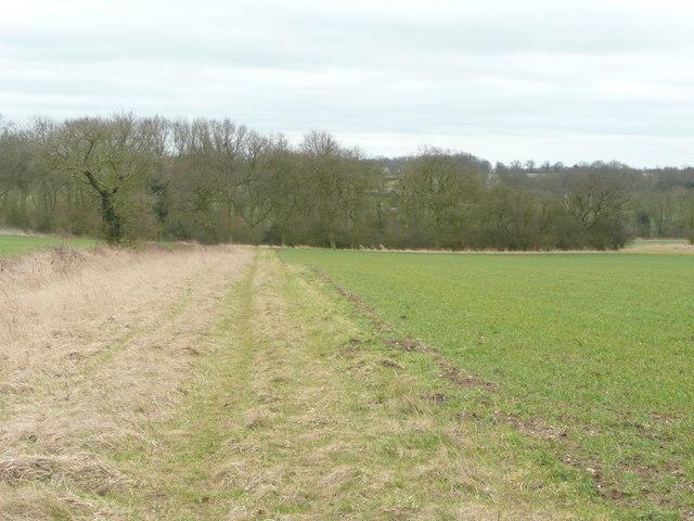 Footpath to Meesden.