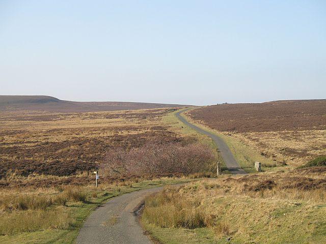 Road on Hepburn Moor
